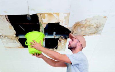Dégâts des eaux suite à une fuite d'eau dans votre immeuble ?